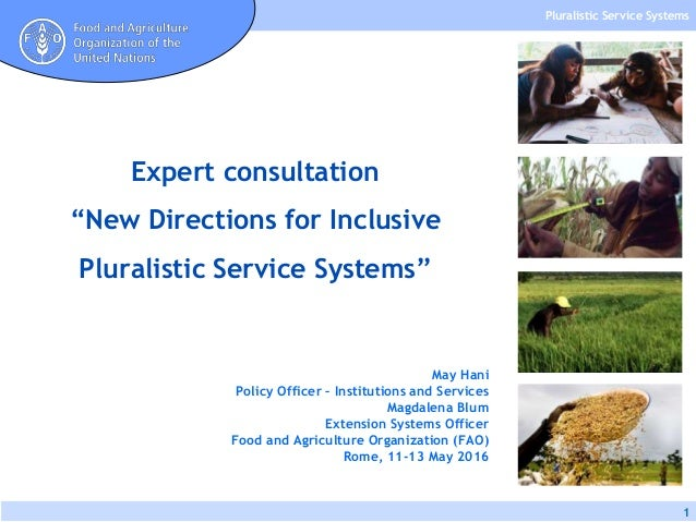 Pluralistic Service Systems 1 May Hani Policy Officer – Institutions and Services Magdalena Blum Extension Systems Officer...