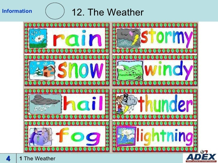 12. The Weather Information 1  The Weather 4