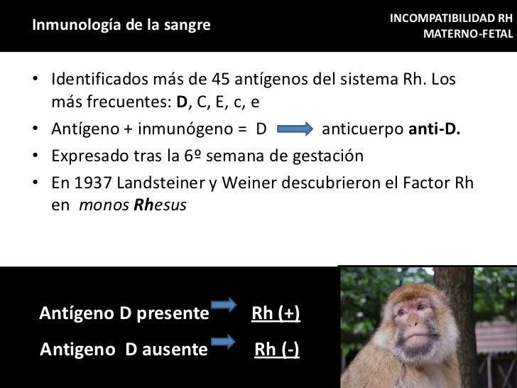 INCOMPATIBILIDAD RHInmunología de la sangre                         MATERNO-FETAL• Identificados más de 45 antígenos del s...