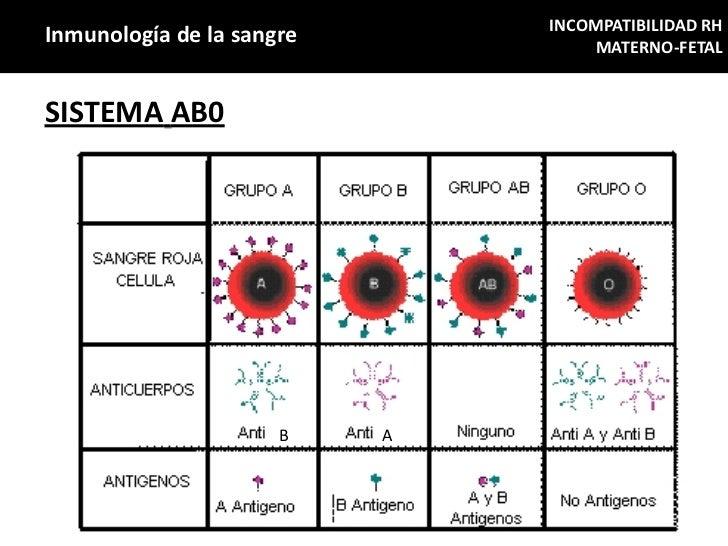 INCOMPATIBILIDAD RHInmunología de la sangre           MATERNO-FETALSISTEMA AB0                      B    A