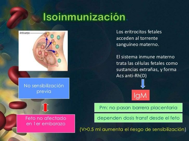 Isoinmunizacion• Embarazo posterior con feto Rh(+)          Sensibilización             precozSíntesis de IgG (menor Pm)At...
