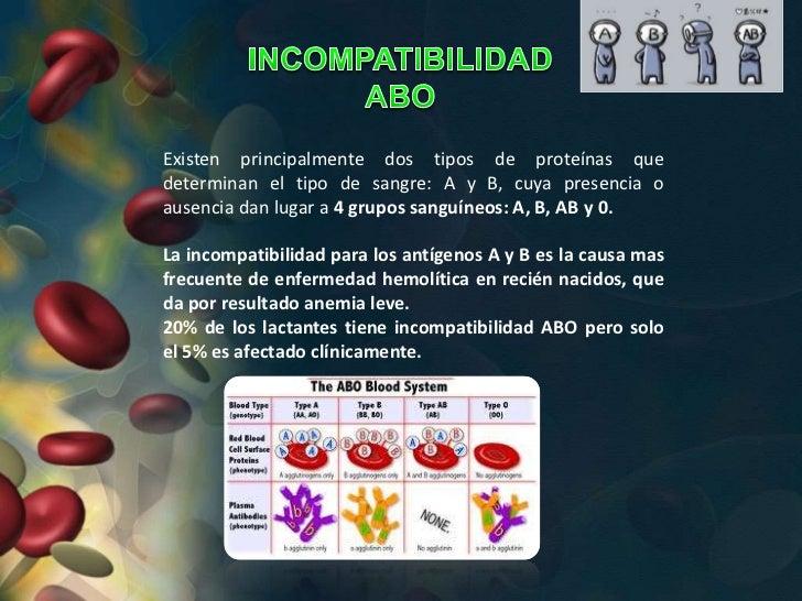Existen principalmente dos tipos de proteínas quedeterminan el tipo de sangre: A y B, cuya presencia oausencia dan lugar a...