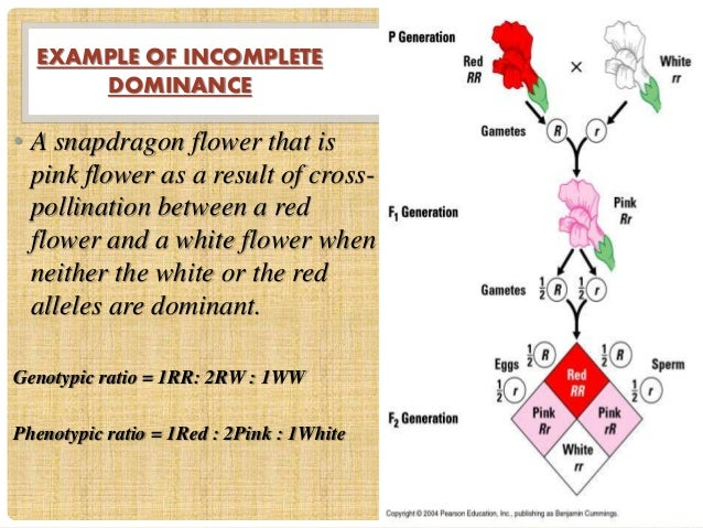 Incomplete and co dominance