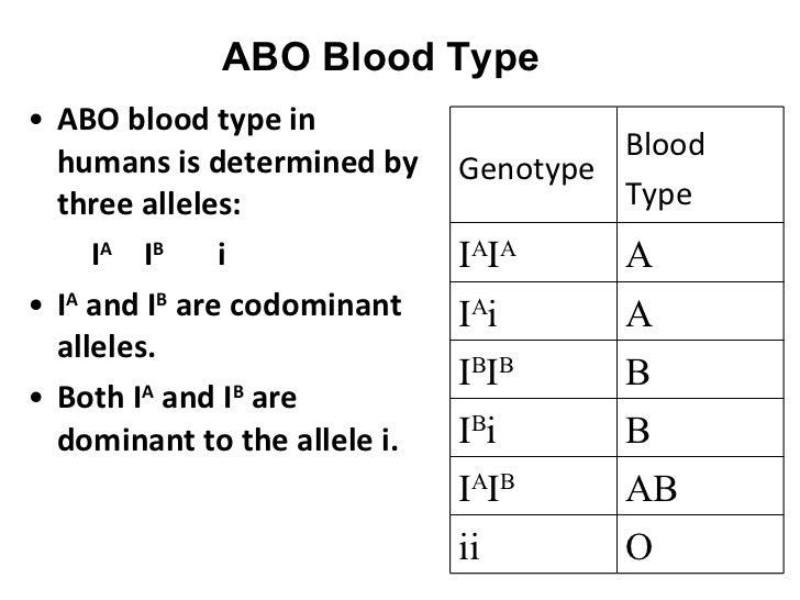 Blood type multiple alleles worksheet