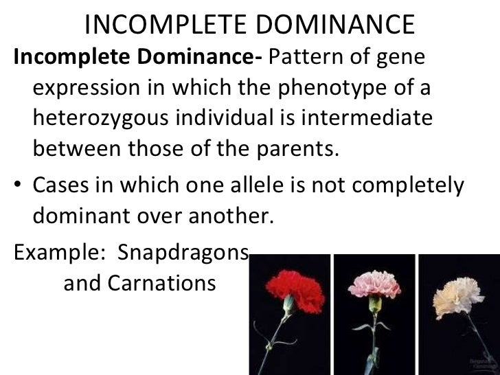 Incomplete codominance multiple_alleles