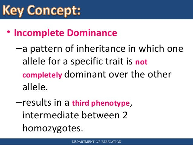 What is an incomplete dominance Punnett square?