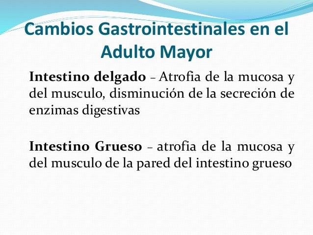 Incontinencia fecal y urinaria en el adulto mayor