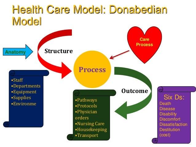 Nursing health model