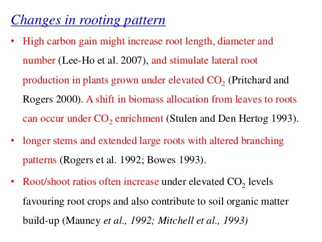 Increased co2 effect on crop production tam 2013-25