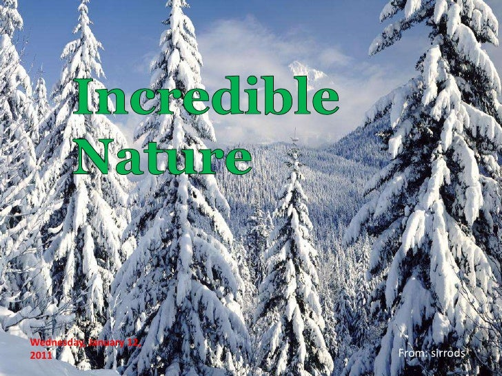 Incredible Nature<br />Tuesday, January 11, 2011<br />From: sirrods<br />