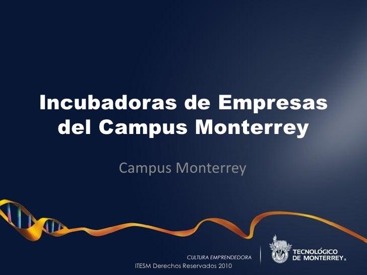 Incubadoras de Empresas   del Campus Monterrey       Campus Monterrey             ITESM Derechos Reservados 2010