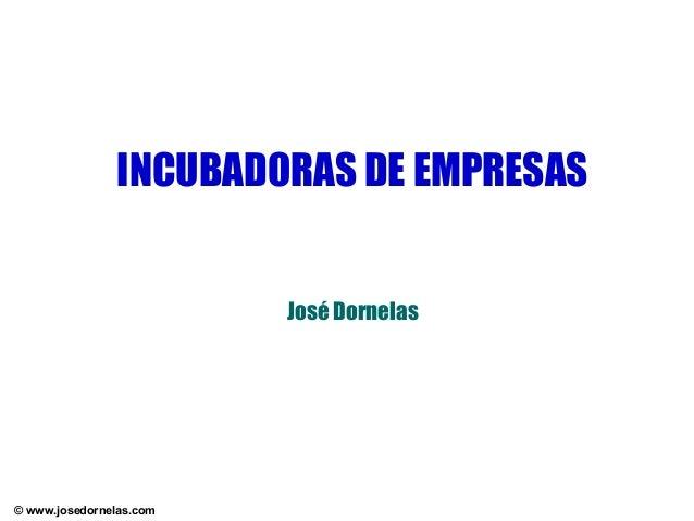 INCUBADORAS DE EMPRESAS José Dornelas  © www.josedornelas.com