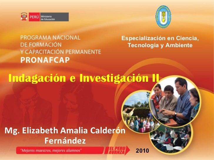 Indagación e Investigación II Mg. Elizabeth Amalia Calderón Fernández 2010 Especialización en Ciencia, Tecnología y Ambiente