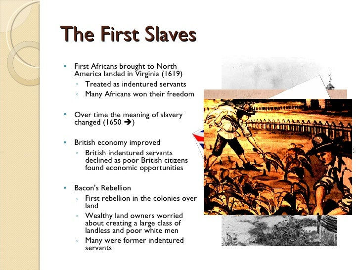 compare and contrast indentured servants and slavery View essay - comparison and contrast of indentured servants and african slaves in america from hy hy 1110 at columbia southern university, orange beach comparison.