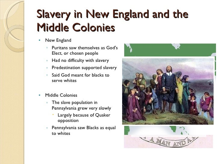 how the new england colonists altered the new england enivironment Environment in new england isn't it amazing to think about the new england colony i will fill you in.