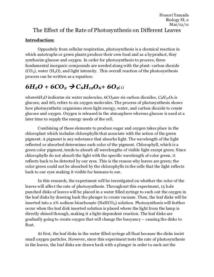 photosynthesis cellular respiration essay