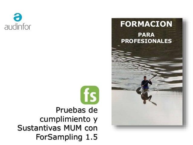 1 FORMACION PARA PROFESIONALES Pruebas de cumplimiento y Sustantivas MUM con ForSampling 1.5