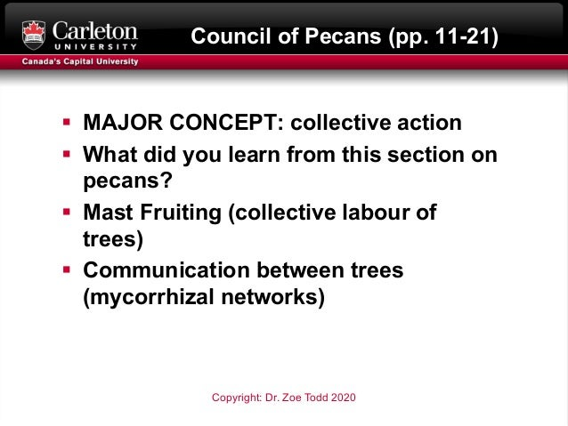 Council of Pecans (pp. 11-21) § MAJOR CONCEPT: collective action § What did you learn from this section on pecans? § Mast ...