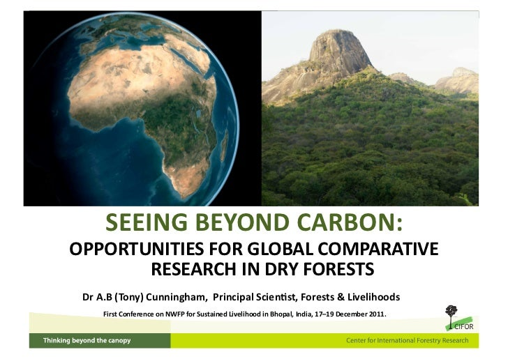 SEEINGBEYONDCARBON:OPPORTUNITIESFORGLOBALCOMPARATIVE       RESEARCHINDRYFORESTS DrA.B(Tony)Cunningham,Pri...