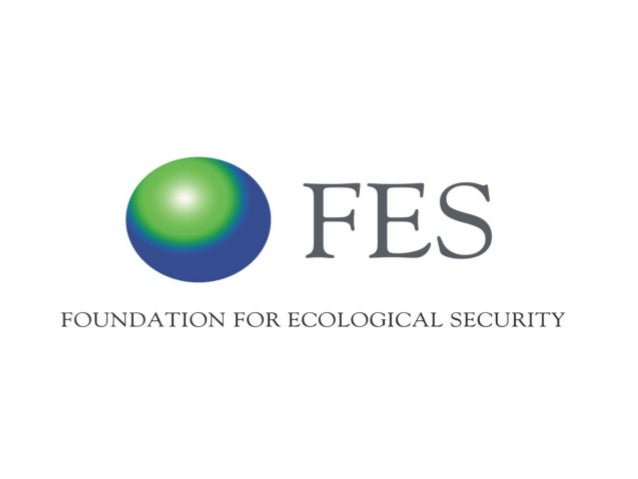 Outline  About FES –Briefly on our work and what it leads to   Studies and CRC FES