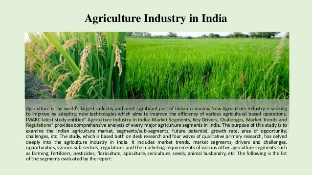an analysis of the most important contribution of the agricultural sector Sector-wise contribution of gdp of india from  global agricultural output gdp of industry sector is $  contribution of industry and services sector is.