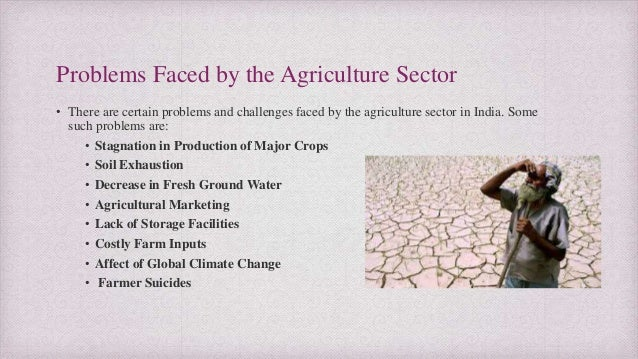 Major problems faced by indian agriculture