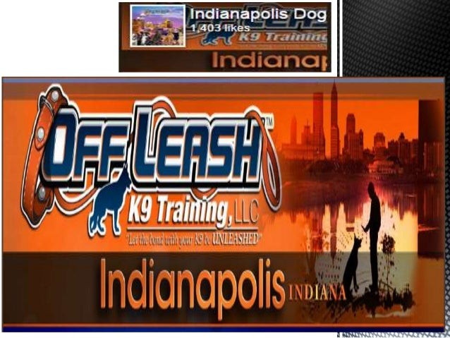 About Us:- Indianapolis dog trainers providing best Dog Training Services in Indiana. We consider that 98% of all dogs can...