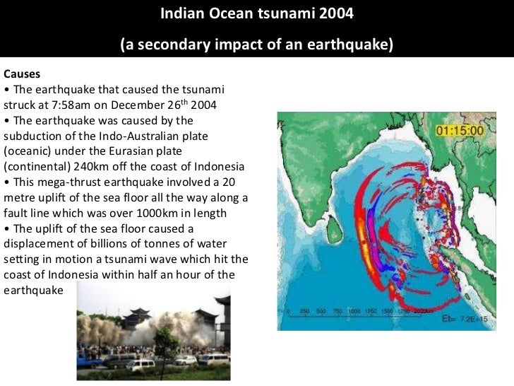case study of tsunami in south india