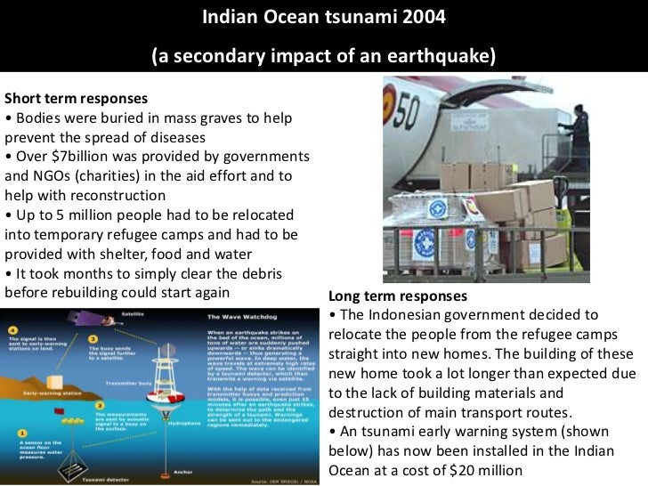 Indian ocean tsunami case study