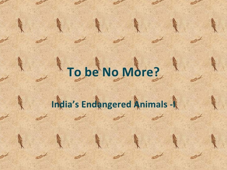 To be No More? India's Endangered Animals -I