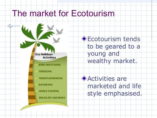 tourism 13 the market for ecotourism