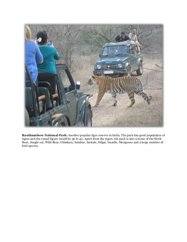 Ranthambore National Park: Another popular tiger reserve in India. The park has good population oftigers and the round fig...