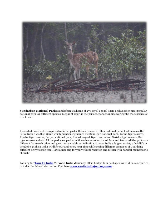 Sundarban National Park: Sundarban is a home of 270 royal Bengal tigers and another most popularnational park for differen...