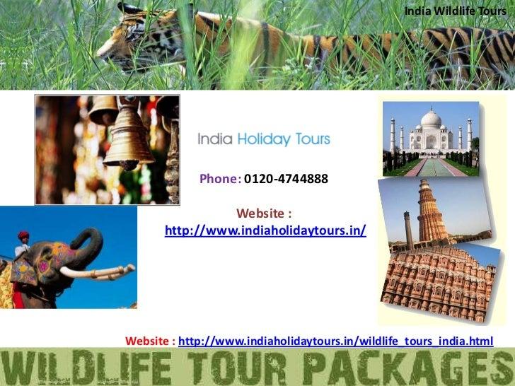 India Wildlife Tours             Phone: 0120-4744888                 Website :       http://www.indiaholidaytours.in/Websi...