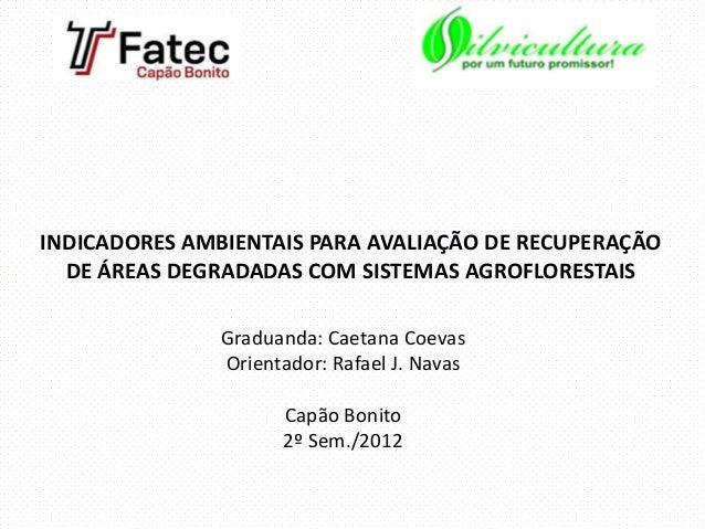 INDICADORES AMBIENTAIS PARA AVALIAÇÃO DE RECUPERAÇÃO  DE ÁREAS DEGRADADAS COM SISTEMAS AGROFLORESTAIS               Gradua...