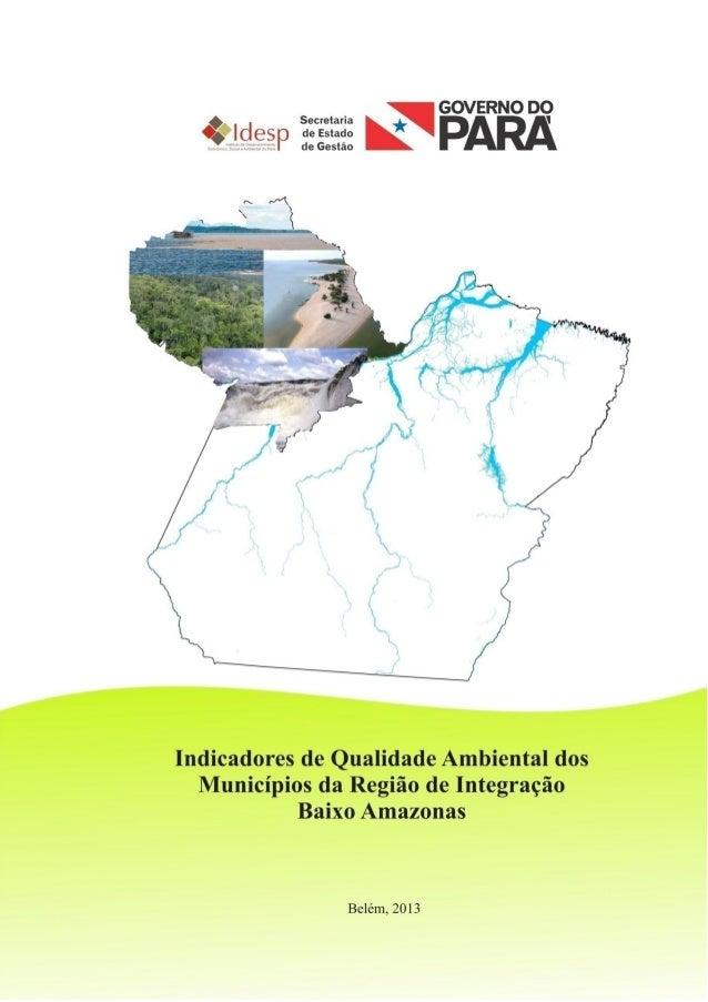 INDICADORES DE AVALIAÇÃO DA QUALIDADE AMBIENTALDA REGIÃO DE INTEGRAÇÃO BAIXO AMAZONAS2012