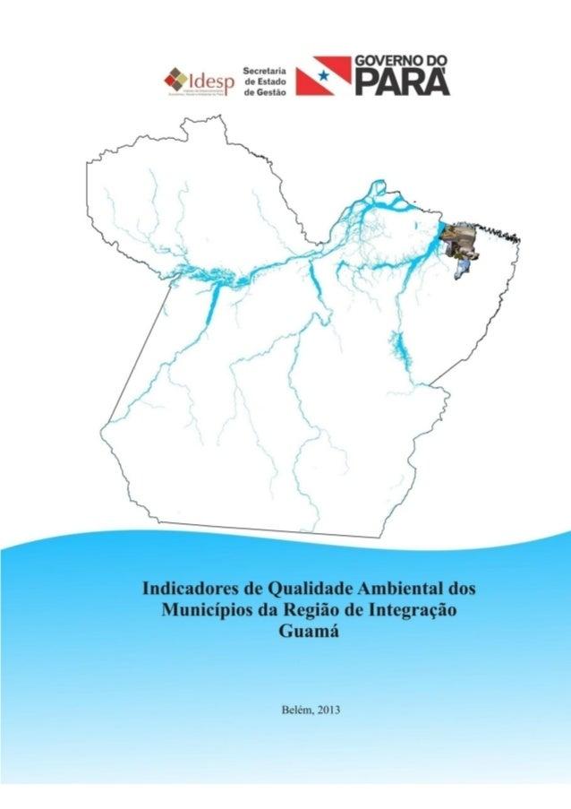 1 INDICADORES DE QUALIDADE AMBIENTAL DA REGIÃO DE INTEGRAÇÃO GUAMÁ 2012
