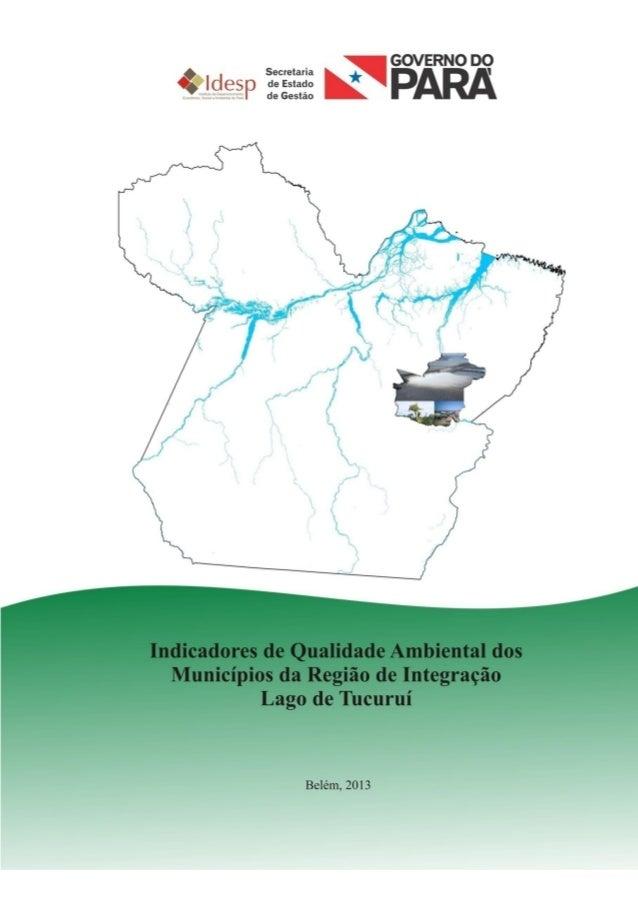 1 INDICADORES DE AVALIÇÃO DA QUALIDADE AMBIENTAL DA REGIÃO DE INTEGRAÇÃO LAGO DE TUCURUÍ 2012