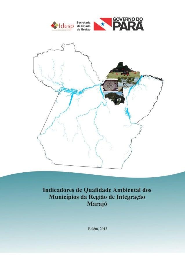 1 INDICADORES DE QUALIDADE AMBIENTAL DA REGIÃO DE INTEGRAÇÃO MARAJÓ 2013