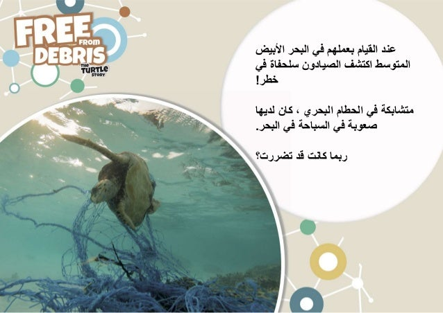INDICIT - Free From Debris - Arabic Slide 2