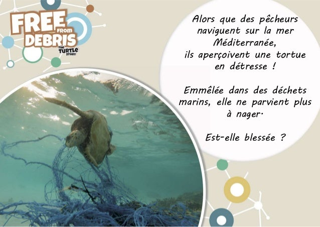 INDICIT - Free From Debris - L'histoire de la tortue Slide 2