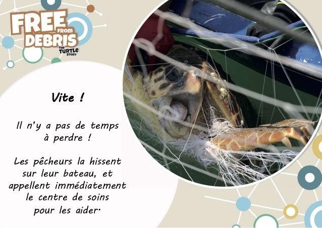 INDICIT - Free From Debris - L'histoire de la tortue Slide 3