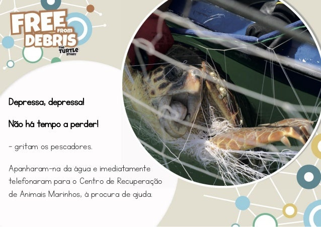 INDICIT - Free From Debris Story - Portuguese Slide 3