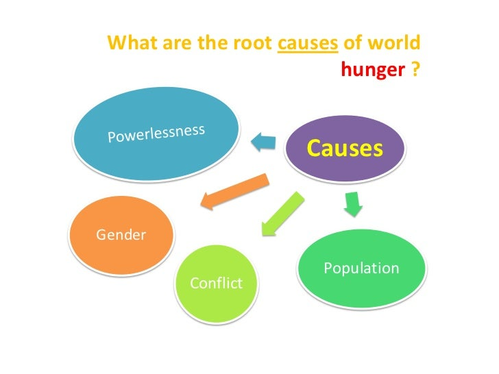 causes of world hunger essays World hunger essays  will solving world hunger causes of food, population imbalance, and poverty why are ways solutions to stop poverty in portland,.