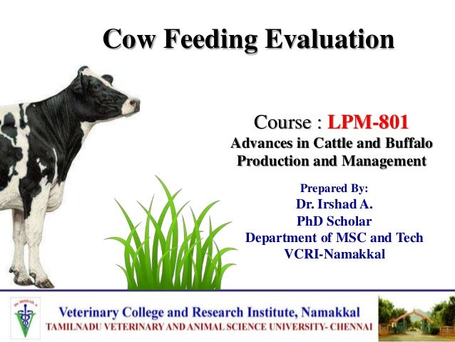 Cow Feeding Evaluation Prepared By: Dr. Irshad A. PhD Scholar Department of MSC and Tech VCRI-Namakkal Course : LPM-801 Ad...