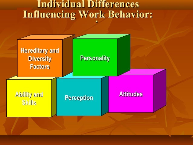 factors that influence individual behaviour at work pdf