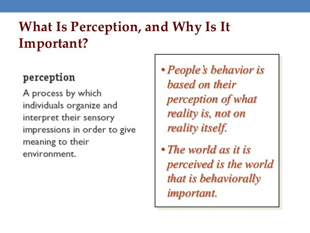 importance of organizational behavior to a This is the book an introduction to organizational behavior (v 11)   understanding organizational behavior  the interactionist perspective: the  role of fit.