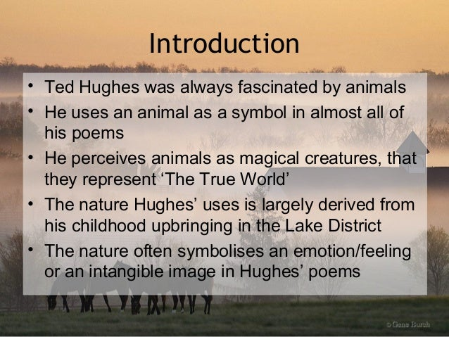 THE THOUGHT FOX BY TED HUGHES EPUB