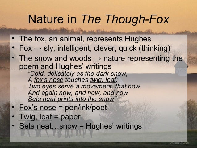ted hughes the thought fox analysis