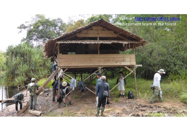 On  a  recent  trip  the  author  saw  fish  eagles,  monitor     Lizards,  macaque  monkeys,  ...